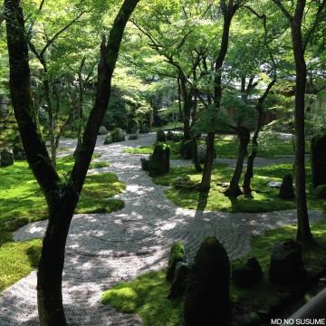 2015_07_13 Zen2